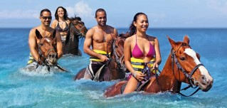 Luminous Lagoon, River Tubing and Horse Back Riding