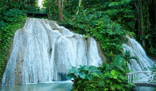 Dunns River falls and Bob Marley Tour