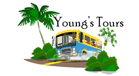 Young's Tours Jamaica