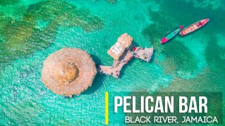 YS Falls and Pelican Bar